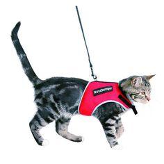 Arnés para gatos con correa Trixie Soft