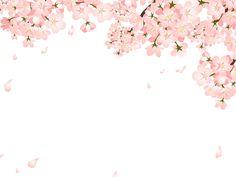 桜 イラスト - Google 検索