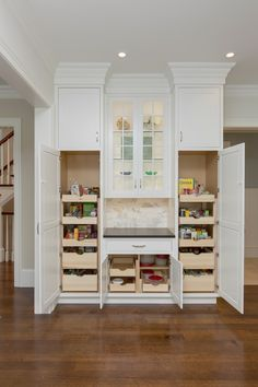 pantry cabinets with pull out drawers and crown molding in Showplace white kitchen