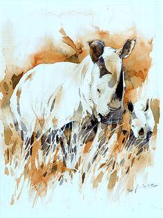 Northern-White-Rhino-2