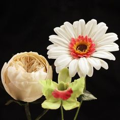 Rosa inglese, gerbera, orchidea cattleya