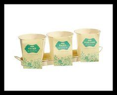 Set Of 3 Herb Pots