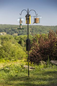 Squirrel-Proof Super Tall Triple Hanger: This expertly crafted pole makes a grand statement when you hang an assortment of feeders or flowers from each of three arms.