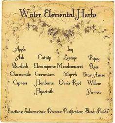 Elements Water: #Water Elemental Herbs.
