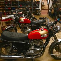 Am I seeing double?!?  always cool stopping by different shops and garages...and a bunch of old triumphs Nortons BSAs and all things British is always a good spot to be. . . #uptopmotors #triumph #motorcycle #shop #garage #mechanics #vintage #british @officialtriumph @triumphamerica