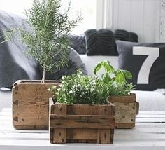 Great idea for vintage wooden boxes