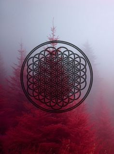 sempiternal bring me the horizon - Google zoeken