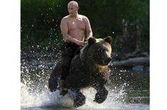 <b>PUTIN RIDER PÅ BJÖRN </b>En viktig del av propagandaapparaten kring Vladimir Putin är machobilderna som Kreml sprider av honom – vilket förstås inbjuder till parodier på sociala medier. En manipulerad bild där den ryska presidenten ser ut att rida på en björn är en av de som cirkulerat mest flitigt. <br /> <b>Klicka vidare för att se fler manipulerade bilder på Putin</b>.
