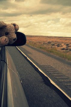 Hit the Road Jack - 11 Things to Consider Before Your Next Road Trip