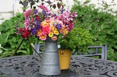 Theresa Doss-French pitcher  Garden Delights in Lovely French Design