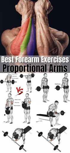 The forearms are made up of a bunch of smaller muscles that move in four main ways: wrist flexion (bending your palm inward), wrist extension (raising the back of your hand), forearm pro-nation. Gym Workout Chart, Gym Workout Tips, Weight Training Workouts, Biceps Workout, Workout Women, Wrist Workouts, Workout Fitness, Bench Press Workout, Workout Diet