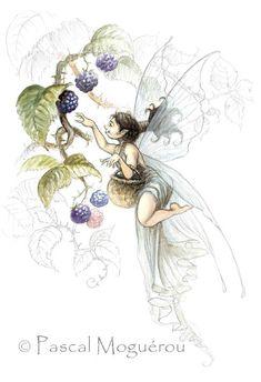 Collecting Berries ~ Pascal Moguérou