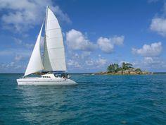 nice catamaran