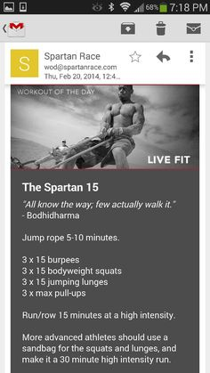3in1 30 Day Challenge Abs Burpees and Squats Lets  236 x 419 jpeg 0e7aeddfba5a24d0ff77f34de36f2422--spartan-race-training-spartan-workout.jpg