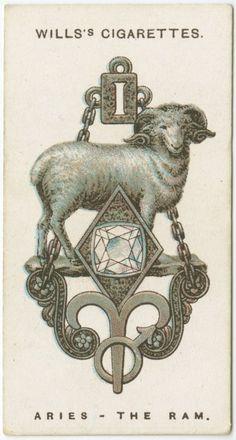 Aries the Ram - Cigarette Card