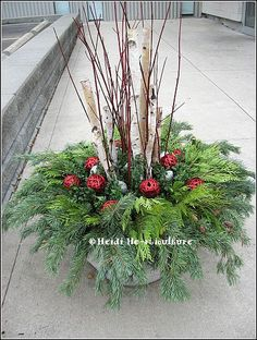 Let's create beautiful Christmas decorations using a garden pot for display. Outdoor Christmas Planters, Christmas Urns, Western Christmas, Outdoor Pots, Outdoor Flowers, Outdoor Christmas Decorations, Christmas Holidays, Holiday Decor, Green Christmas