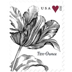 New Forever Stamps for 2 ounce value - USPS 2 ounce Vintage Tulip  ♥  Repinned by Annie @ www.perfectpostage.com
