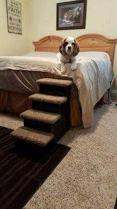 Dog Steps Cat Stairs Designer 24 By HamptonBayPetSteps