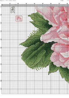 Pion-004.jpg (2066×2924)