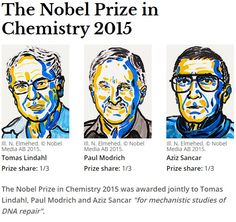 The 2015 Nobel prize in chemistry has been won by Aziz Sancar, Tomas Lindahl, and Paul Modrich for mapping and explaining how cells repair their DNA and safeguard the genetic information Nobel Prize In Chemistry, Dna Research, Dna Repair, Nobel Peace Prize, Academy Of Sciences, Scientific American, Interesting News, Microbiology, Geology
