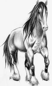 Znalezione obrazy dla zapytania konie rysunki