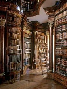 90 Home Library Ideen für Männer – Private Reading Room Designs - Mann Stil Library Room, Dream Library, Cozy Library, Library Ideas, Belle Library, Vienna Library, Library Ladder, Library Inspiration, Library In Home