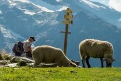 Self-guided Tour du Mont Blanc Trek | France Italy Suisse
