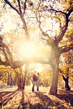 outdoor engagement photography with great light love the trees