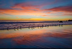 Birds of Paradise - Sunset along the Pacific Coast not too far from Malibu. I was lucky to find all of these birds in line walking along the shore. Cool Pictures, Cool Photos, Beautiful Pictures, Henri Matisse, Lago Baikal, America Continent, Sky Landscape, Vash, Morning Inspiration