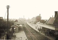 Totton Station c.1905 Southampton England, New Forest, Hampshire, Old Photos, Railroad Tracks, Image, Old Pictures, Hampshire Pig, Vintage Photos
