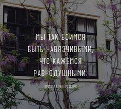 Лучшие стихи великих поэтов   Литература