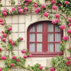 Wonderful window!