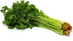 7 Incredible Reasons Why You Should Consume Celery in the Evening