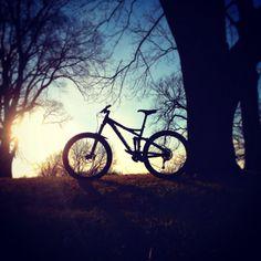 Devinci Troy XP MTB Mountain Bike Sunset