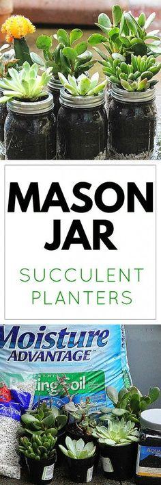 Bring Summer Indoors: Mason Jar Succulent Planters                                                                                                                                                                                 More