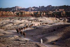 Steve McCurry . Camel Caravan, Southern Afghanistan, 1980