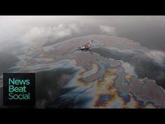 Nuova marea nera nel Golfo del Messico: fuoriusciti 340mila litri di petrolio (VIDEO)