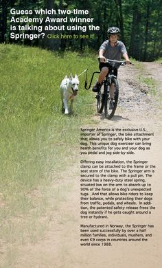Springer Dog Exercise Bike Attachment Imported From Norway