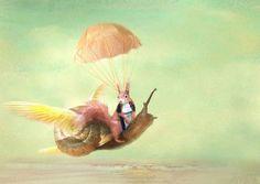 The Adventures Of Cedric And Claude Fine Art Print - Trudi Simmonds