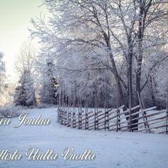 Kotimaiset joulukortit kuvattu Salossa, Turussa, Koskella, hinta 50 senttiä kappale http://www.salonsydan.fi/tuote-osasto/kortit #kotimaisetkortit #joulukortit