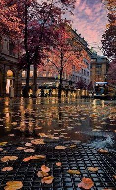 Zurich, Switzerland  Suiça  Доступ к нашему сайту намного больше информации   http://storelatina.com/switzerland/travelling  #traveling #viajar #foodswitzerland #recetas