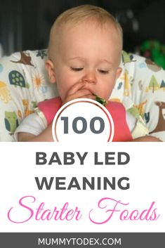 100 Baby Led Weaning Starter Foods A list of 100 baby led weaning starter foods, perfect for your first month of baby led weaning. A list of simple finger foods to offer baby including links to lots of breakfast, lunch and dinner Baby Led Weaning First Foods, Baby Led Weaning Breakfast, Baby First Foods, Baby Weaning, Baby Finger Foods, Picky Toddler Meals, Toddler Lunches, Toddler Dinners, Toddler Food