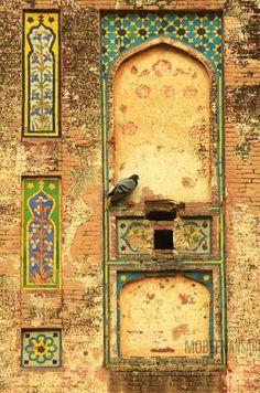 از خانه عشق آنک بپرد چو کبوتر هر جا که رود عاقبت کار بیاید #مولانا