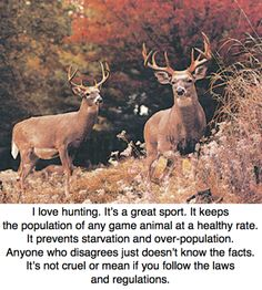I also love hunting, however, to say we hunters hunt for any reason than we enjoy is silly and misleading.