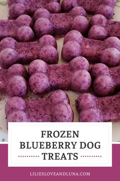 Frozen blueberry dog treats are an easy to make 2 ingredient dog treat. Dog Biscuit Recipes, Dog Treat Recipes, Dog Food Recipes, Frozen Dog Treats, Frozen Blueberries, 2 Ingredients, A Food, Food Processor Recipes, Blueberry