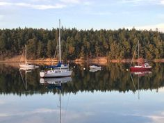 View of Miner's Bay, Springwater Lodge, Mayne Island, British Columbia, Canada