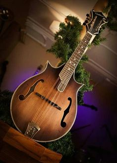 Washburn 2-point mandolin.