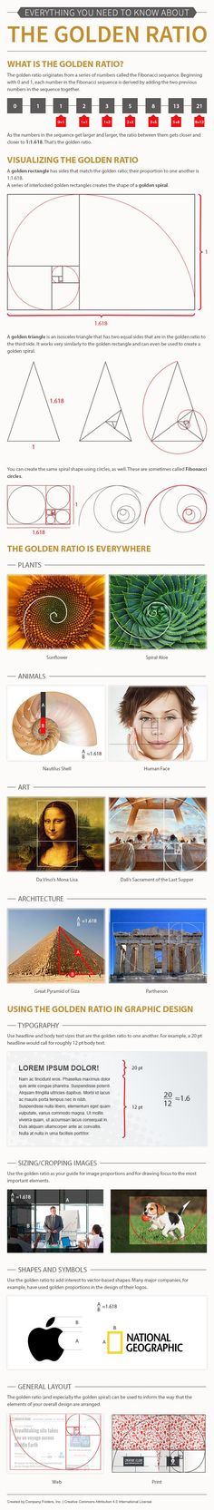 Learn how to create mathematically beautiful designs with this infographic that explains the golden ratio.