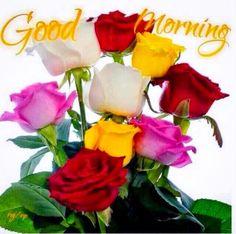 Have a Nice Day my L❤️VE