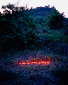 Neon Love Words Photographs – Fubiz Media
